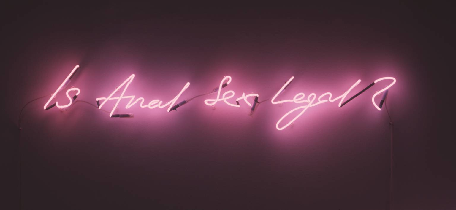 Tracey Emin Is anal sex legal? 1998